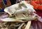 160929Tiger-skull.jpg