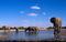 170622_elephant.jpg