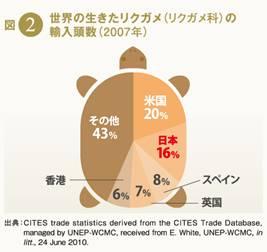 101012_tortoise_graph.jpg
