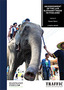 14_Elephant_trade_Thailand.jpg