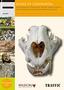 15_Bones_of_Contention_an_Assessment_AfricanLionBones.jpg