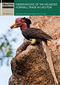 16_Observations_of_the_Helmeted_Hornbill_Trade.jpg